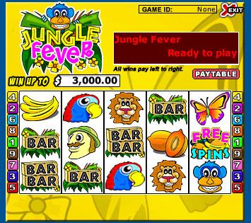 bingo cafe jungle fever 5 reel online slots game