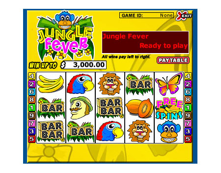 bingo cafe jungle fever 5 reel online slots game